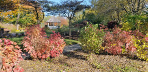 Gross Catholic's Geo Garden